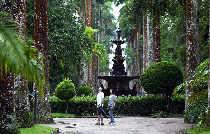 Visita Guiada ao Jardim Botânico - RJ