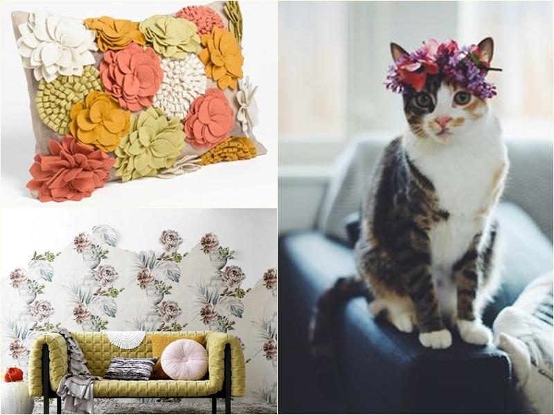 pagina gato, almofada, papel